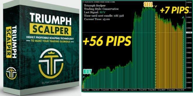 Triumph-Scalper FOREXCRACKED